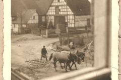 Straßenszene mit Bauer und Pferden