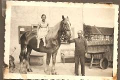 Bauer mit Pferd im Hof