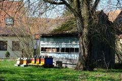 Das alte Bienenhaus mit den neuen Bienenkästen davor