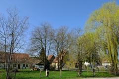 Das Grundstück Ende März