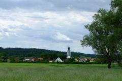 Binzwangen von Westen mit eingerüsteter Kirche