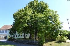 Schulspielzentrum