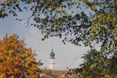 Alte Bäuerin beim Zusammenrechen von Heu (Spätsommer 1990)