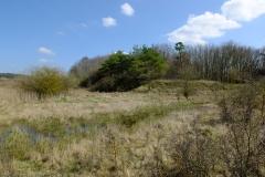 Die frühere Grube im Schindholz (Ende März)